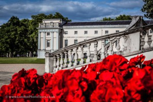 red flowers at the queens house greenwich london