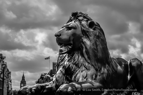 essential london photography tour - landseer lion - trafalgar square London. Black and White photograph. Londonphototours and Workshops 2014.