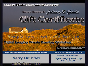 landscape in orange - gift certificate digital imaging
